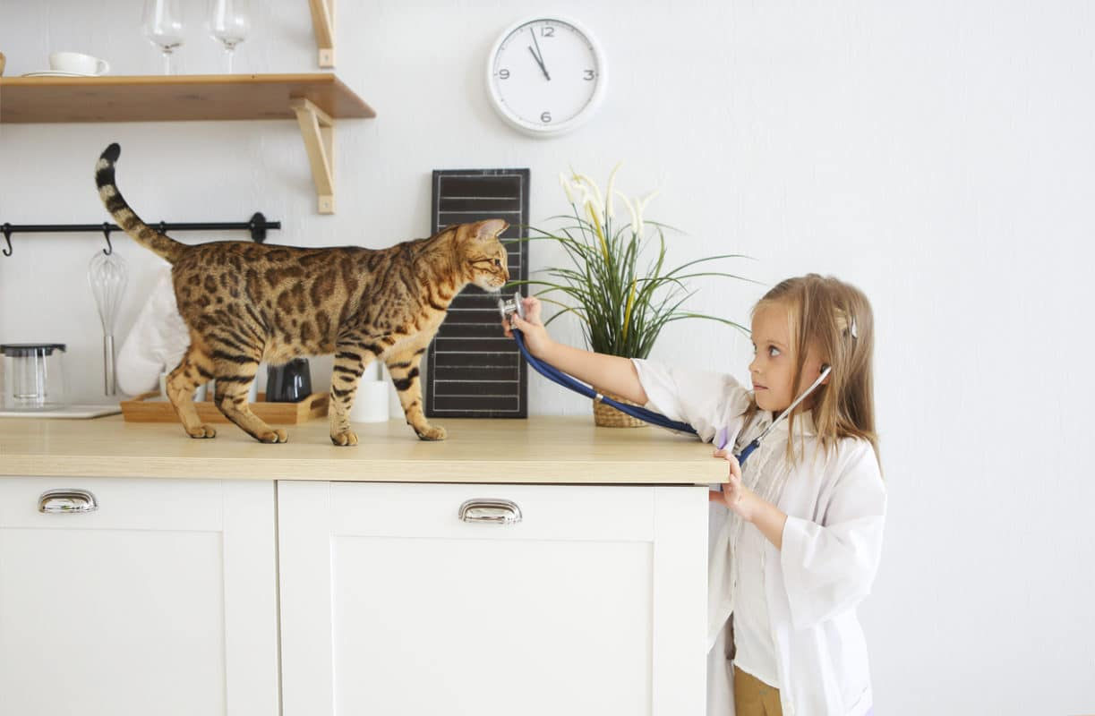 Little girl playing veterinary with her kitten on the kitchen