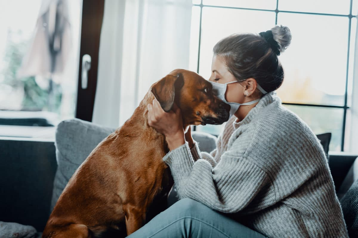 Woman wearing a protective face mask cuddles, plays with her dog at home